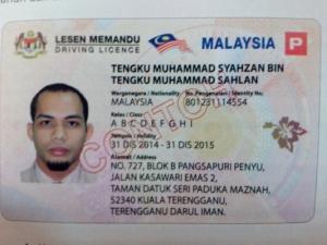 Malaysian driving license